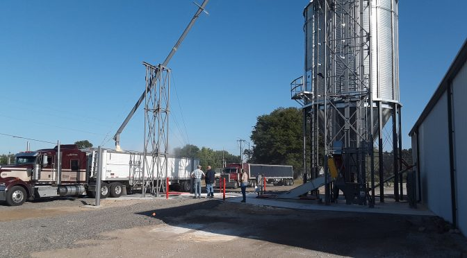 GRAINZYME Phytase corn in hopper bottom truck, getting ready to deliver to poultry operations in North Carolina